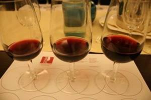 Corso Assaggiatori Vino ONAV