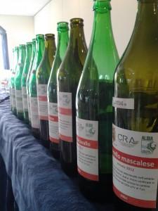 Vinificazione da vitigni sconosciuti in degustazione a Viggiano